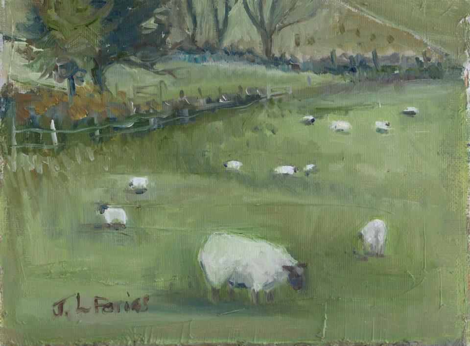 Sheep Study I